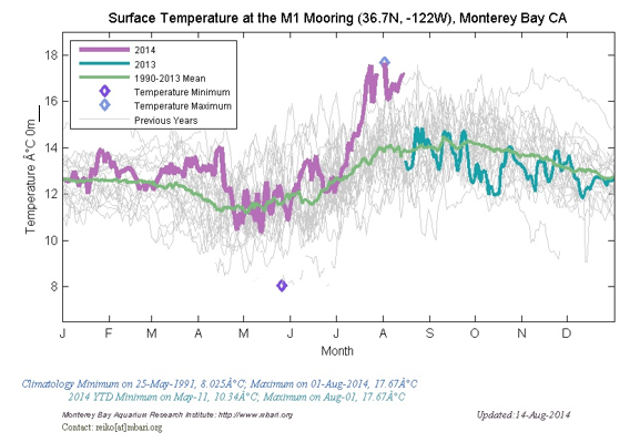 Charting course - Yearly surface ocean temperature in Monterey Bay from 1990-2014. Temperatures from 2014 are shown magenta, and highlight the notably warm events of July and August 2014 (Data collection supported by the Monterey Bay Aquarium Research Institute; graphs produced by Reiko Michisaki of the Biological Oceanography Group led by Francisco Chavez.).
